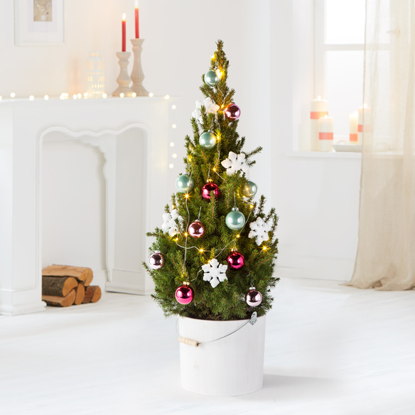 Weihnachtsbaum Frozen Beauty mit Schmuck-Set im Holzeimer