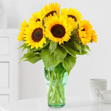 Sonnenblumen 8 Stiele