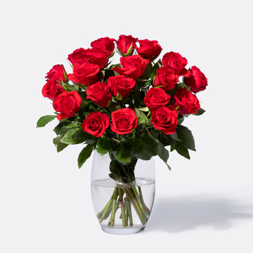 Rote Rosen Größe M 20 Stiele