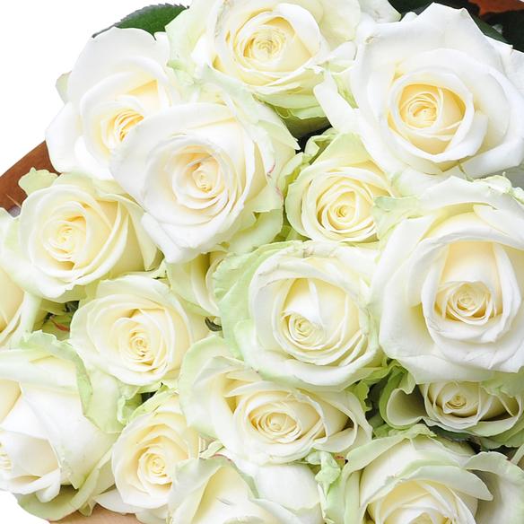 Rosenstrauß  Weiße Rosen 40 Stiele