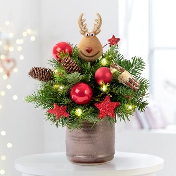 Hey Rudolph mit Lichterkette