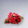 Wiesenstrauß  Blütenschein