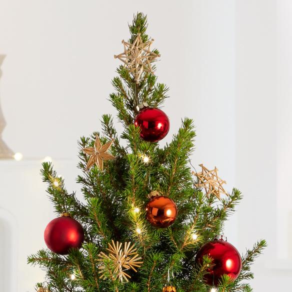 Weihnachtsbaum  Weihnachtsbaum Weihnachtsabend ca. 80 cm