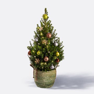 Weihnachtsbaum Christmas Wish ca. 80 cm