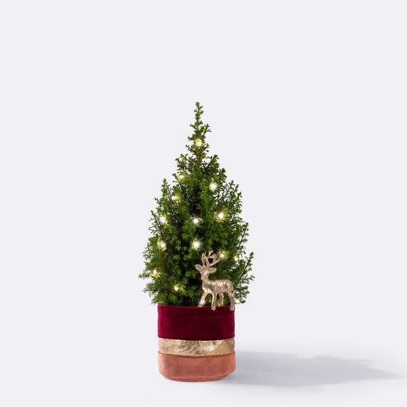 Weihnachtsbaum  Weihnachtsbaum ca. 40 cm mit Hirschstecker mit Übertopf
