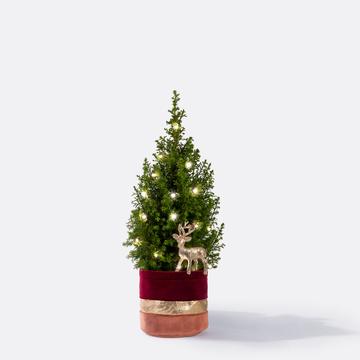 Weihnachtsbaum ca. 40 cm mit Hirschstecker mit Übertopf