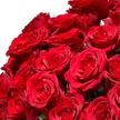 Rosenstrauß  Rosen in Rot 40 Stiele