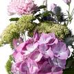 Wiesenstrauß  Blumenzauber