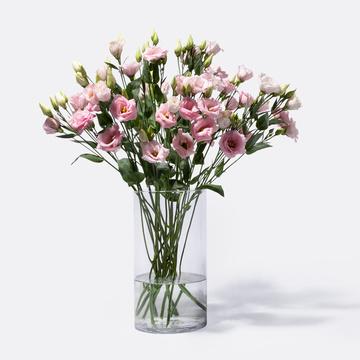 Lisianthus in Rosa 10 Stiele