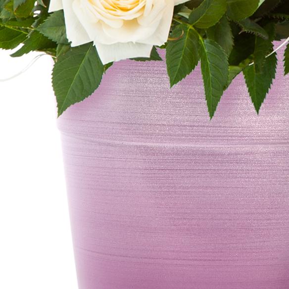 Topfrose in Cremeweiß mit LED-Lichterkette im Keramik-Übertopf