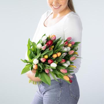 Tulpen Mix 50 Stiele