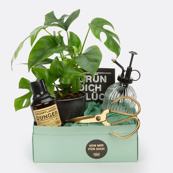 Geschenkset Grün dich glücklich