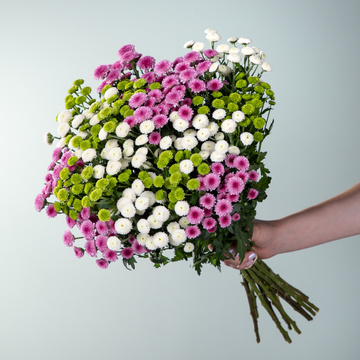 Chrysanthemen Mix Madiba