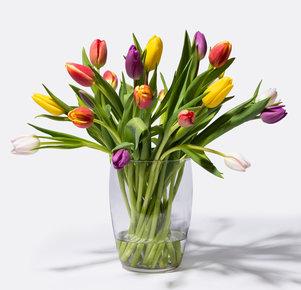 20 Stiele bunte Tulpen in Weiss, Rot, Gelb, Orange, Rosa und Lila