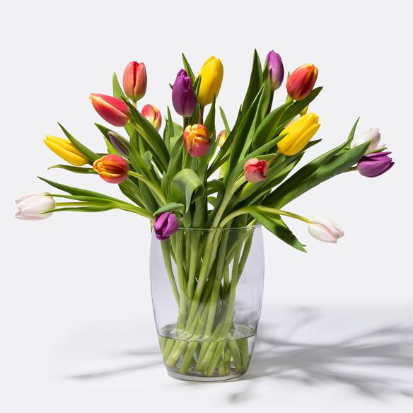 Bunte Tulpen 20 Stiele in Weiss, Rot, Gelb, Orange, Rosa und Lila