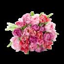 20 Stiele rosafarbene gefüllte Tulpen