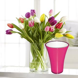 20 Stiele Bunte Tulpen mit fuchsiafarbener Vase