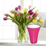Bunte Tulpen 20 Stiele mit fuchsiafarbener Vase