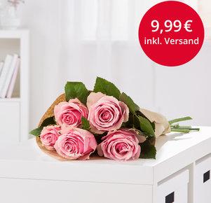 5 Stiele Pinkfarbene Rosen in Pink