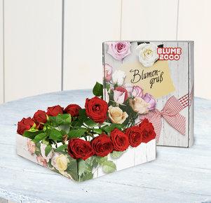 Rosenbrief mit roten Rosen