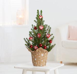 Weihnachtsbaum Nordische Weihnacht in Weiss, Rot und Grün