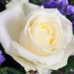 Blumenstrauß  Chrystal Blessing