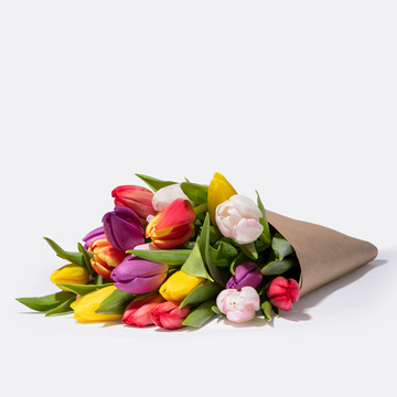 Bunte Tulpen 20 Stiele mit Schokolade FÜR DICH