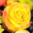 Blumenstrauß  Hase im Glück mit österlicher Mini Sachertorte