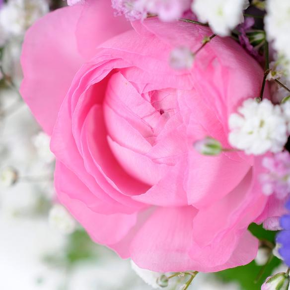 Blumenstrauß  Farbenfreude