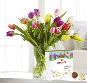 Bunte Tulpen mit Hachez Pralinen Kleiner Ostergruß in Weiss, Rot, Gelb, Rosa, Pink und Creme