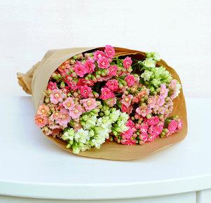 Kalanchoe pink, rosa, weiß 6 Stiele