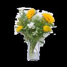 """Blumenstrauß """"Sonnenbad"""