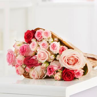 Mellow Roses M