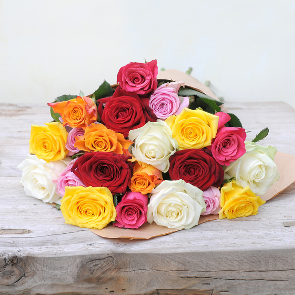 Bunte Rosen in Rot, Gelb, Orange, Rosa und Pink
