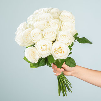 Weiße Rosen 20 Stiele