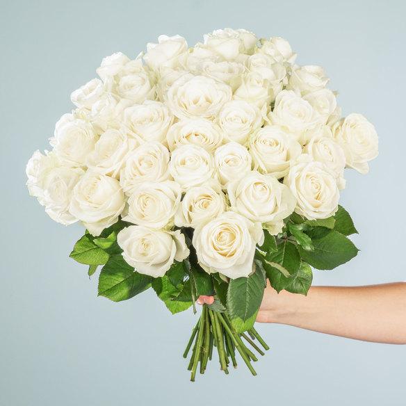 Rosenstrauß  Rosen in Weiß 40 Stiele