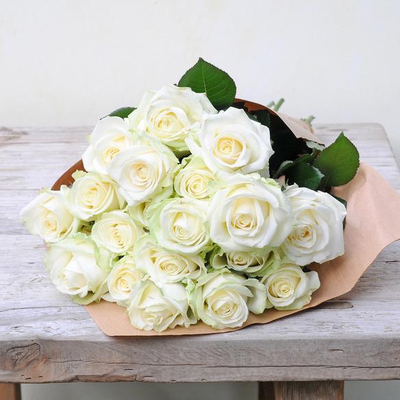 Weiße Rosen 20