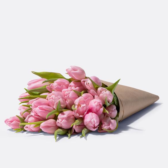 Tulpen in Rosa 20 Stiele