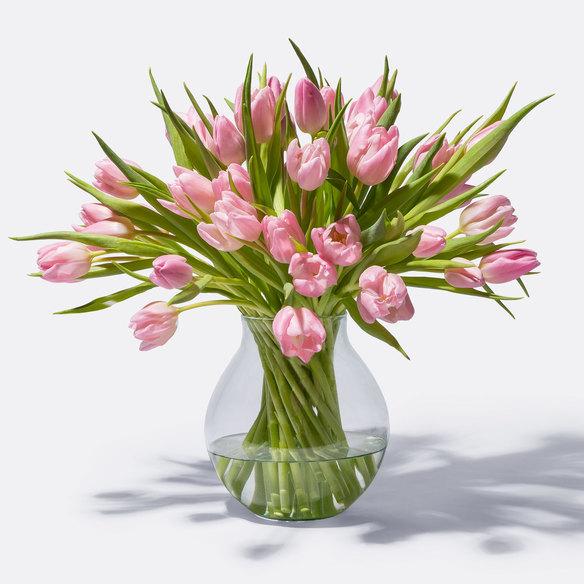 Tulpen in Rosa 40 Stiele in Rosa