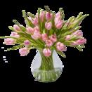 40 Stiele rosafarbene Tulpen