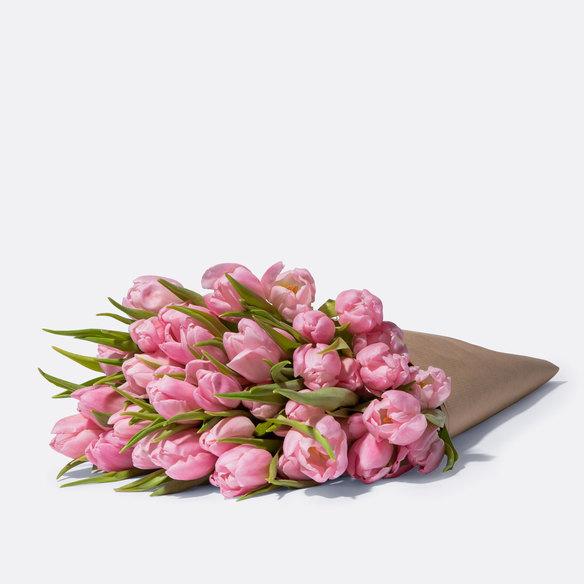 Tulpen in Rosa 40 Stiele