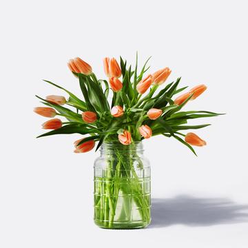 Tulpen in Orange 20 Stiele