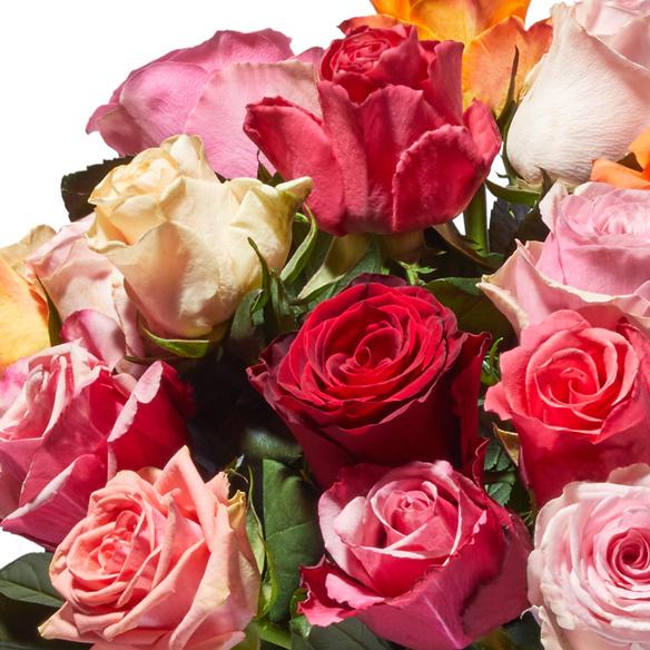 Rosenstrauß  Bunte Rosen 20 Stiele