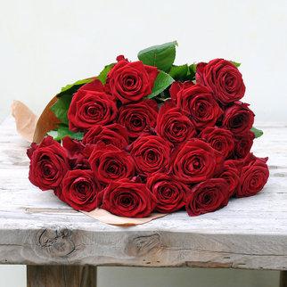 Rosen in Rot 20 Stiele