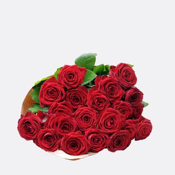 Premium-Rosen in Rot 20 Stiele